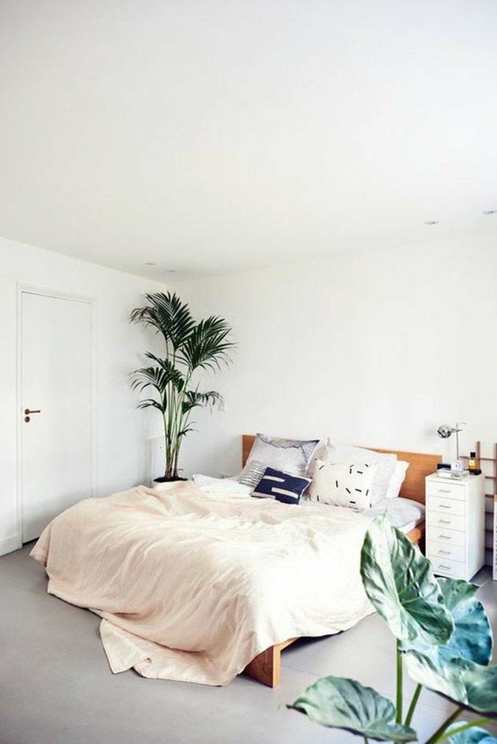 dormitorios-de-matrimonio-cama-de-madera-cojines-pequeños-plantas-grandes