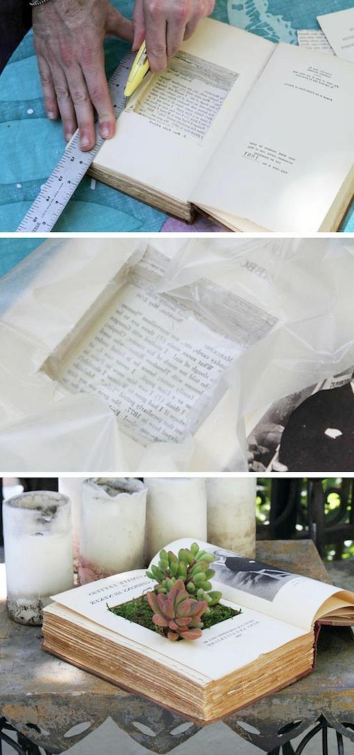 01-ideas-para-regalar-flor-plantada-en-un-libro-idea-interesante-instrucciones