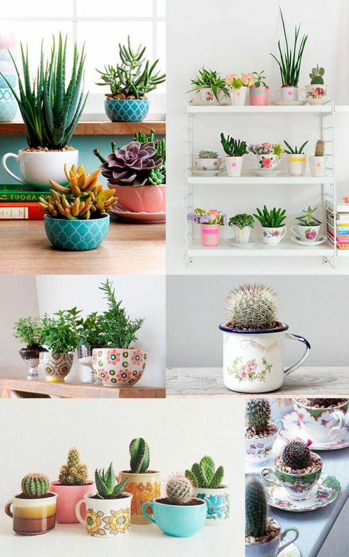 ideas-para-regalar-tazas-usadas-como-ollas-con-cactus