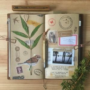 Ideas de usar cuaderno de viaje
