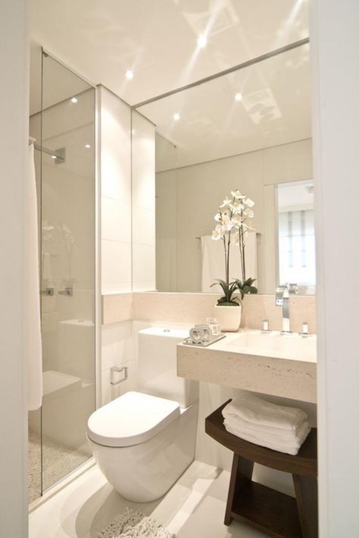 cuartos de baño pequeños, tonos claros, flores, espejo grande, estilo modernista