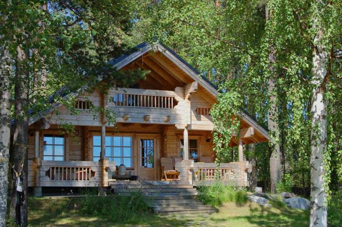 casa y campo, villa de madera con techo triangular en bosque de abedules