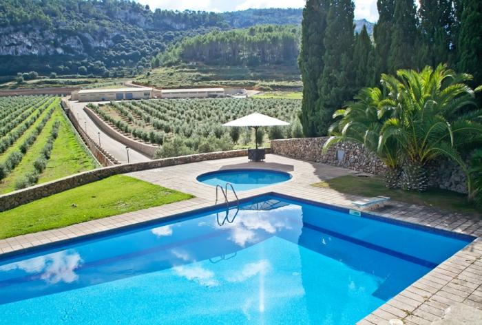 casas de campo, paisaje con piscina y viñales, árboles y sombrilla blanca