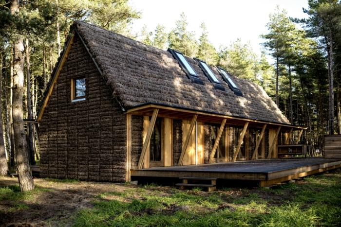 casas barats rurales, villa de madera con techo triangular cubierto de musgo, paisaje con bosque