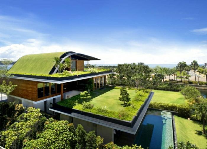diseñar casas, villa de dos pisos con el techo cubierto de césped y piscina