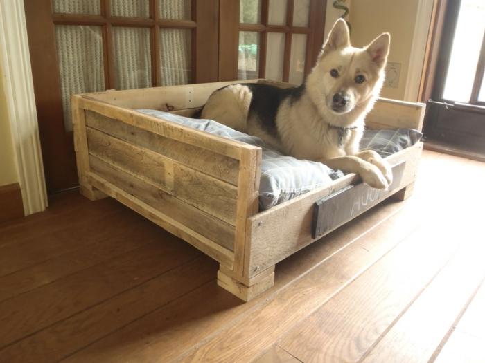 muebles de palets, cama para perro hecha con palets, perro y ventana