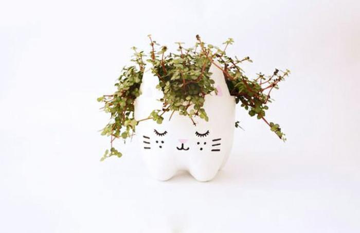 maceta de reciclada botella de plastico, forma de gato, flor verde