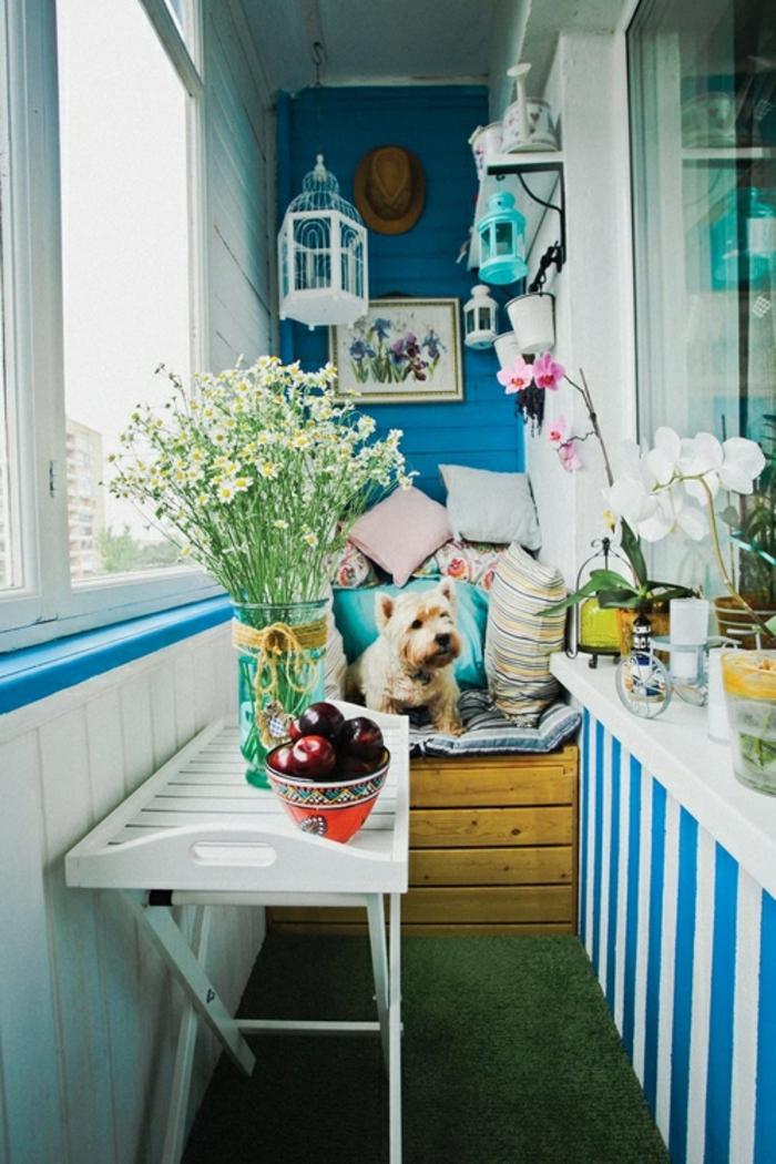 tarrazas pequeñas, balcón en blanco y azul con césped artificial, sillón con cojines y perro, jarrón on flores