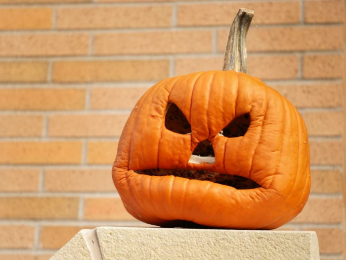 calabazas de Halloween, calabaza seca con cara de anciano tallada
