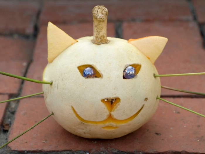 como vaciar una calabaza, calabaza blanca tallada en forma de gato con ojos azules