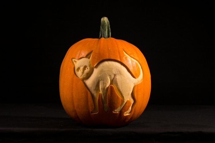 calabaza Halloween, calabaza pelada con patrón en forma de gato