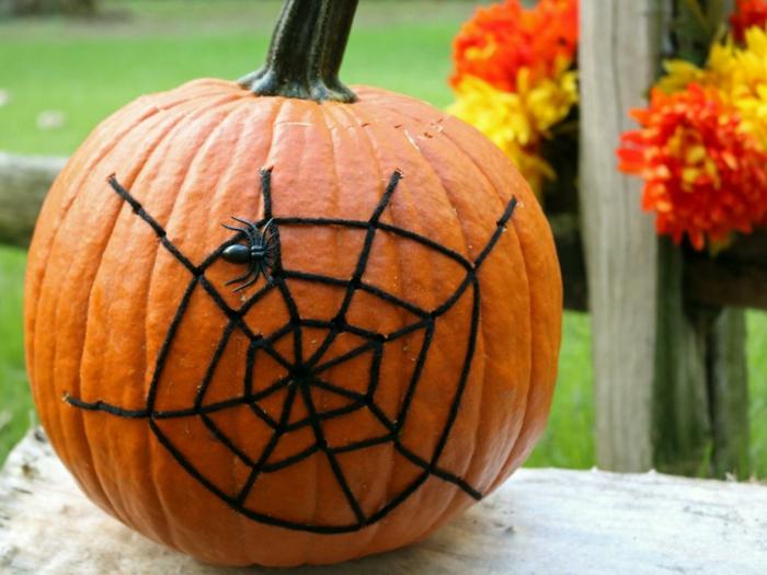calabaza Halloween, calabaza adornada con telaraña de hilo negro