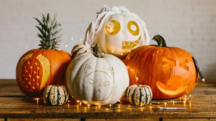 calabazas Halloween, calabazas peladas y talladas con forma de gato y piña