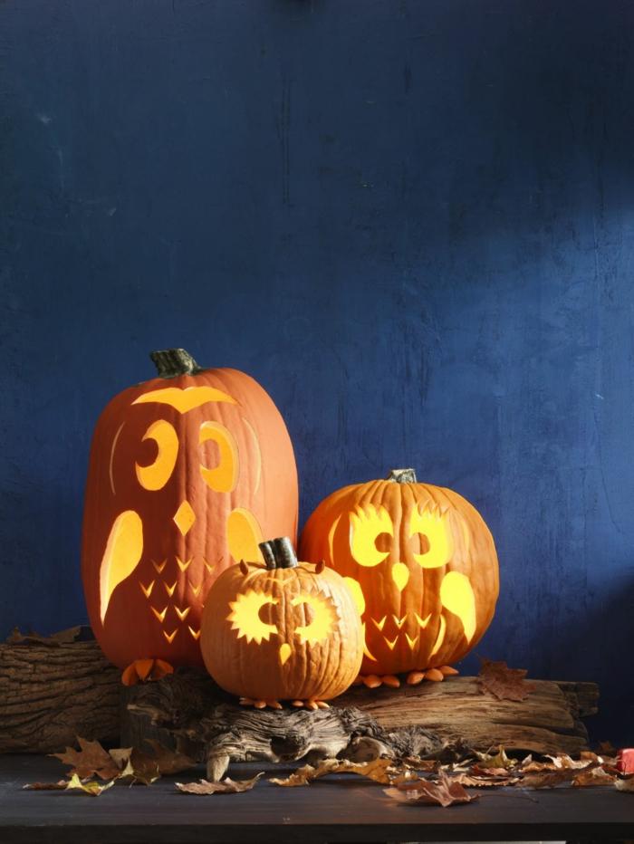 calabazas de Halloween, tres calabazas diferente tamaño talladas con forma de búho