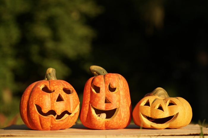 calabazas de Halloween, tres calabazas talladas con caras terrorificas