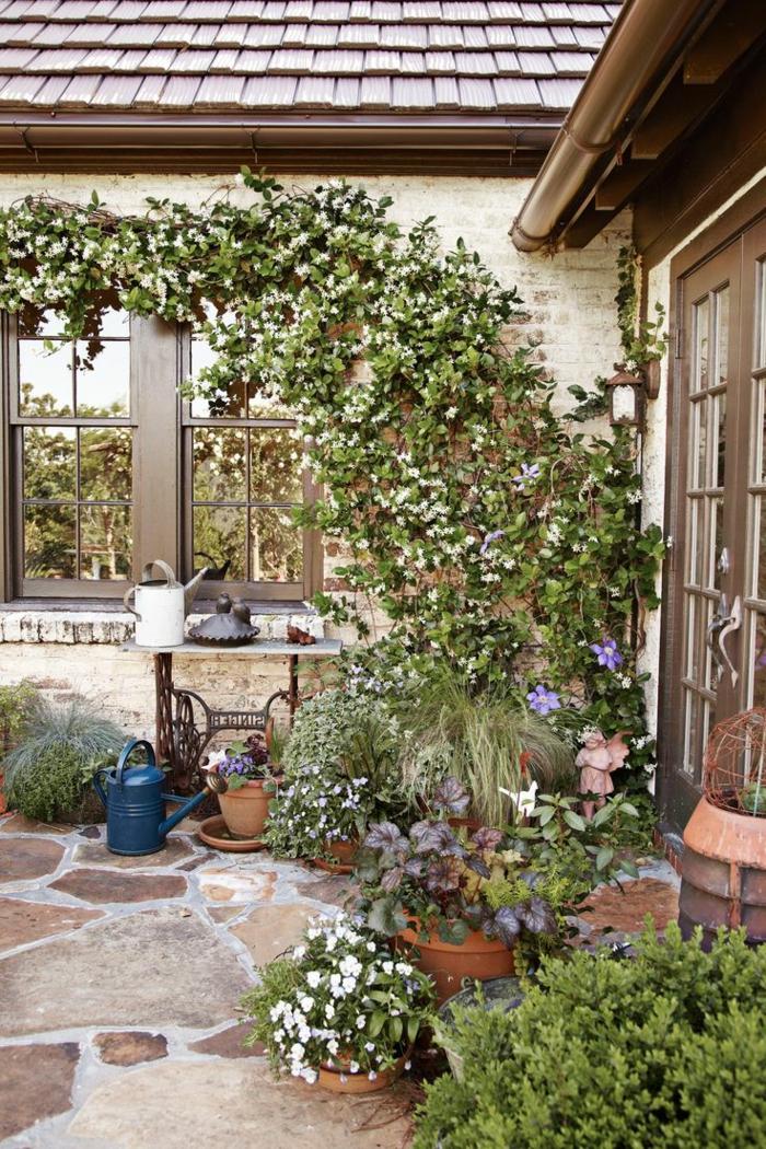 decoracion de jardines, hermosa manera de adornar tus paredes externos con plantas trepadoras, diseño estilo provenzal