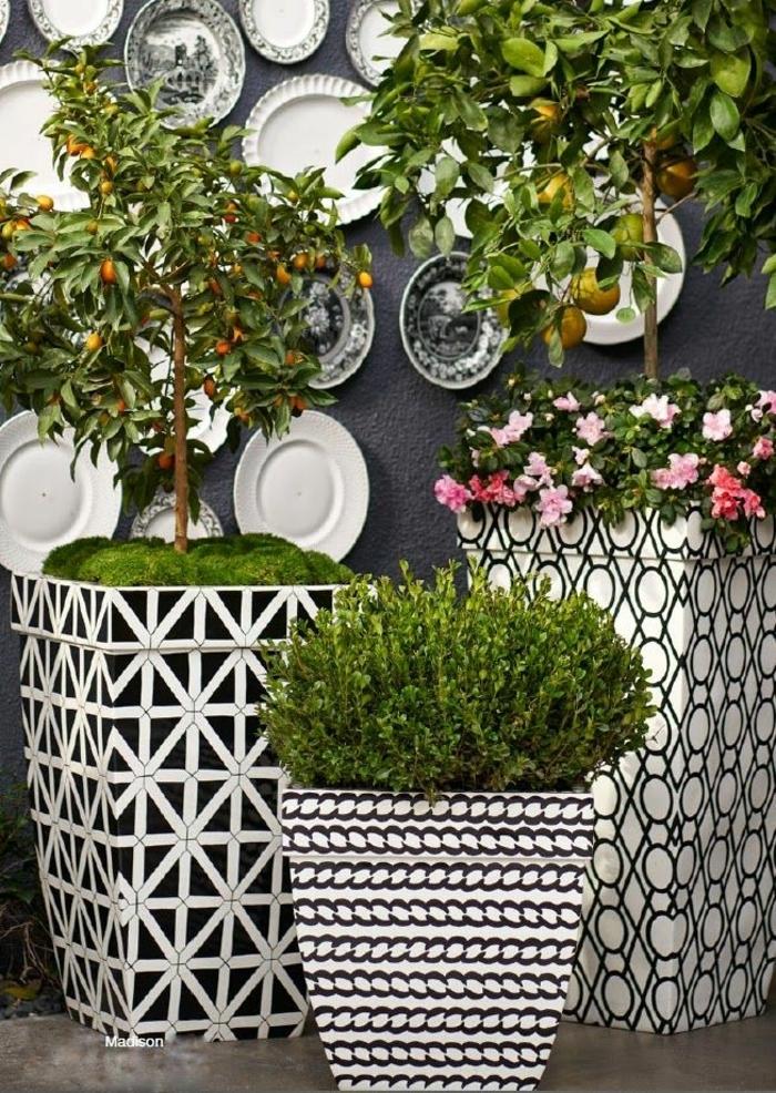 maceteros originales, decoración de patio con altas macetas en blanco y negro con figuras geométricas, plantas decorativas, pared con platos de porcelana