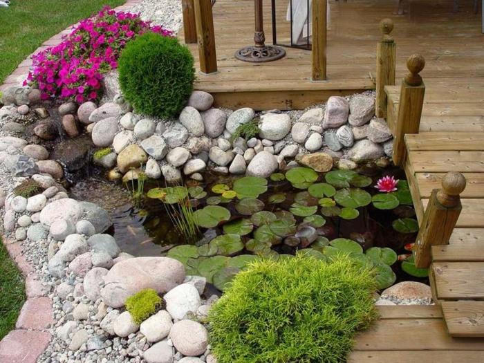 jardines pequeños, plantas acuáticas en un pequeño lago casero, flores bonitas color fucsia, puente de madera, arbustos chiquitos
