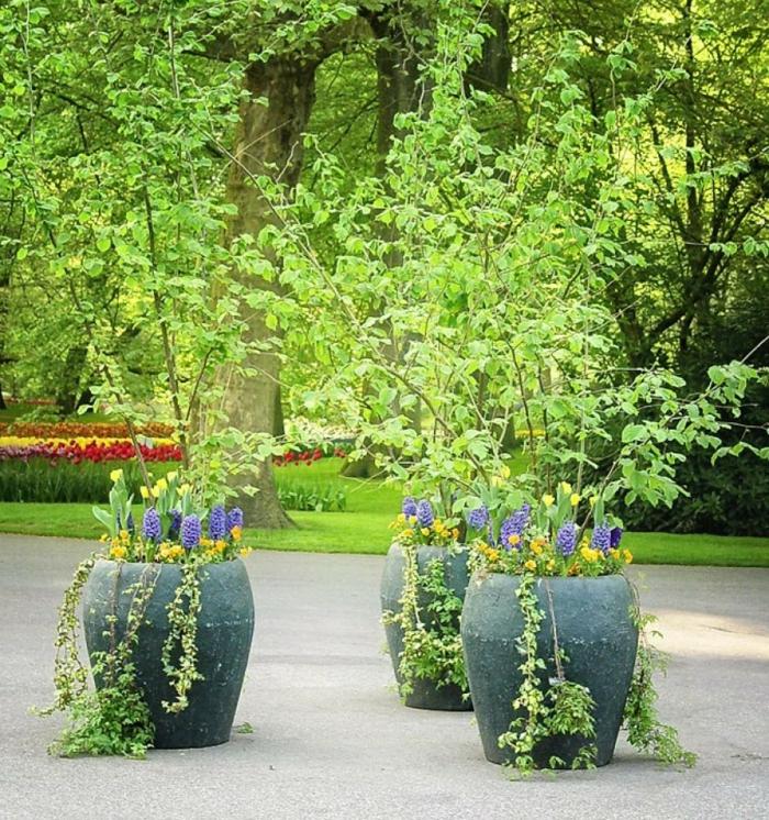 jardineras, decoración parque, maceteros grandes de cemento gris, árboles decorativos, tulipanes amarillos, jacintos lilá