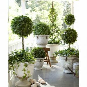 Un jardín con maceteros grandes - decoración y mantenimiento
