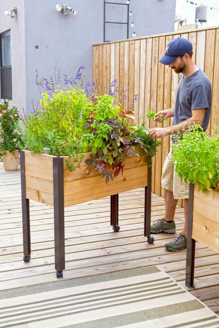 jardineras de madera, macetero alto de madera con ruedas, plantas verdes, hombre con gorro azul