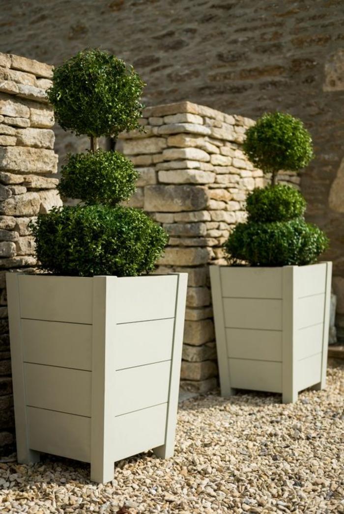 macetas, decoración de jardín con suelo de gravilla, maceteros grandes altos con boj decorativo