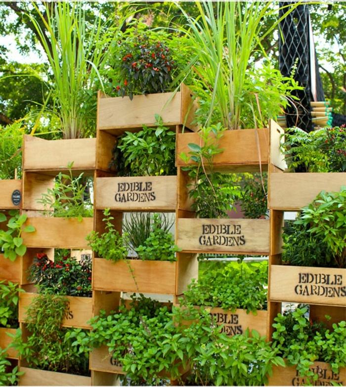 macetas grandes, jardín vertical hecho con cajas de fruta, plantas comibles , especias y hierbas