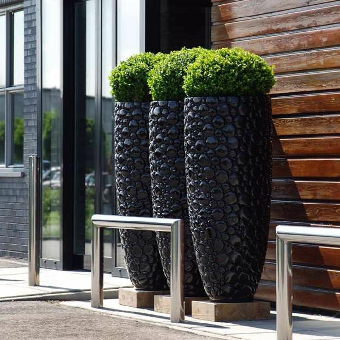 jardineras, decoración entrada, maceteros modernos negros con boj con base de madera, puerta de vidrio