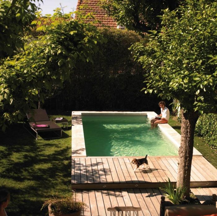 Jardin pequeo con alberca piscinas y albercas fotos de for Decoracion de jardines con alberca