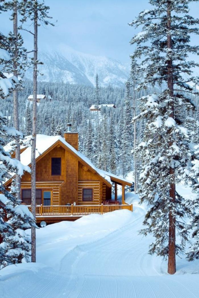 cabañitas del bosque, precioso paisaje invernal, cabaña de madera colocada en el bosque, vista montañosa y pinos altos