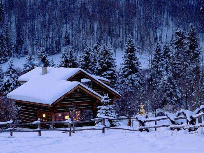 cabañas con encanto, preciosas cabañas de madera en un bosque, pinos altos, ideas de cabañas de madera rurales