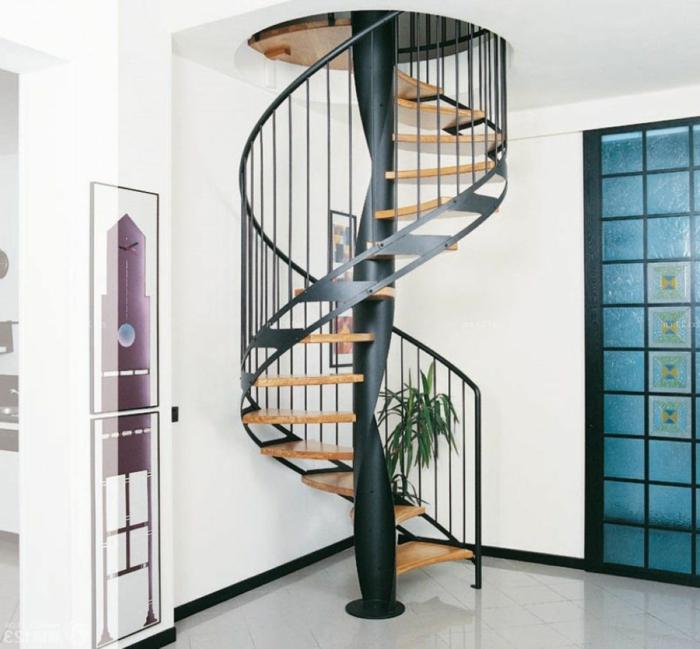 barandillas escaleras, recibidor pequeño con puerta de vidrio azul, escalera de caracol con escaleras de madera y barandilla negra metálica