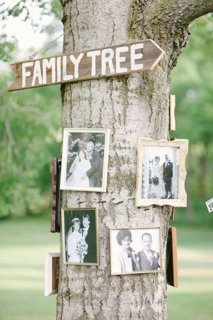 decoracion con fotos, bonita idea para hacer un árbol de familia con fotografías viejas en blanco y negro, manualidades con fotos