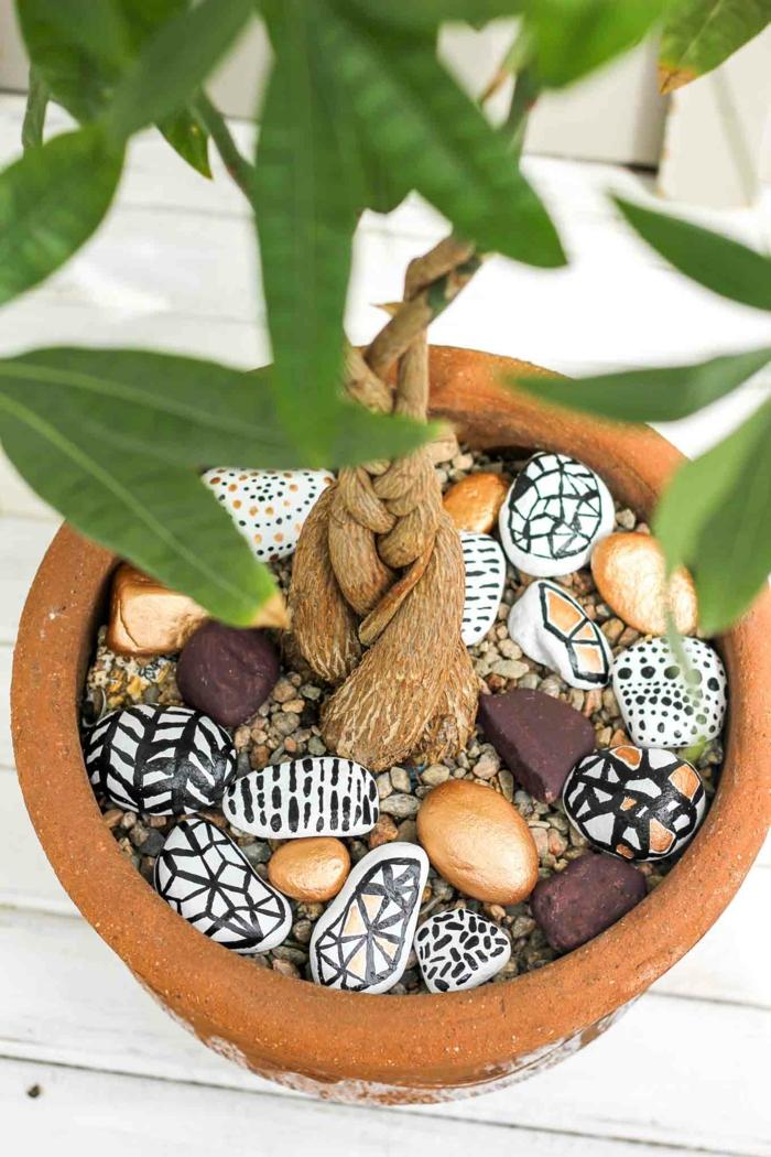 piedras pintadas a mano, pidras para decorar una maceta con planta verde, piedras naturales pintadas en blanco y negro