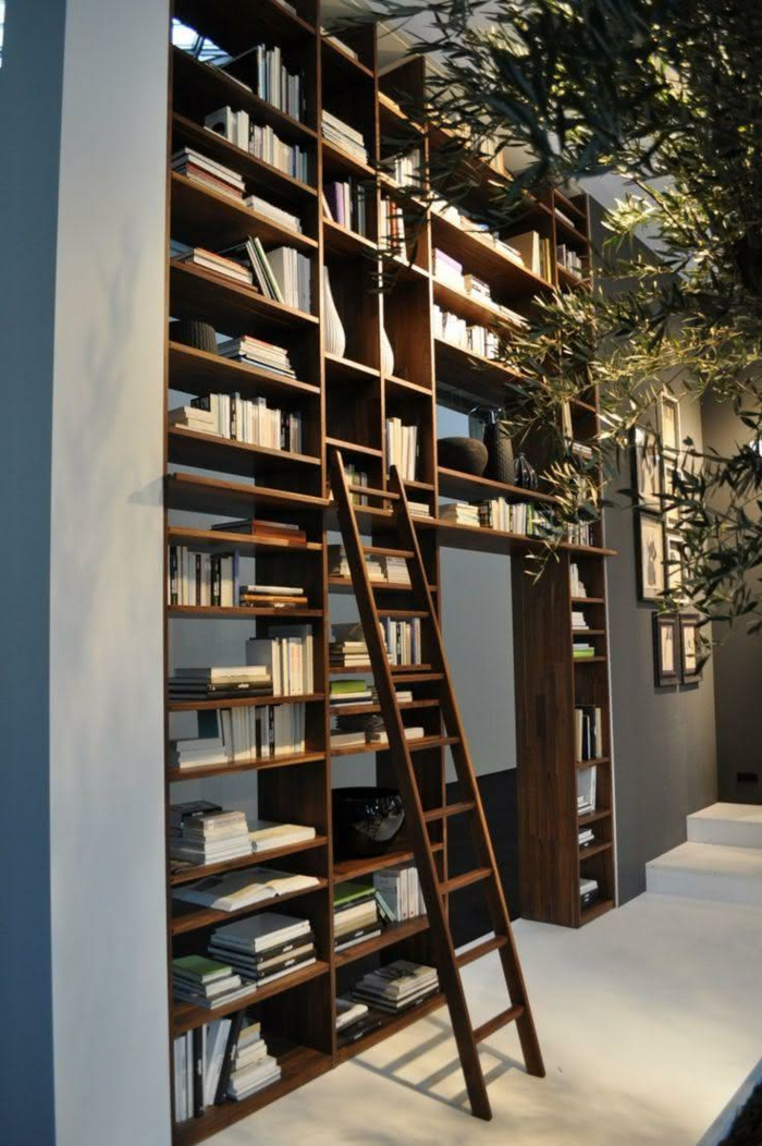 librería en un pasillo, árbol decorativo, estanterias originales, estantería de madera de suelo a techo con escalera de mano