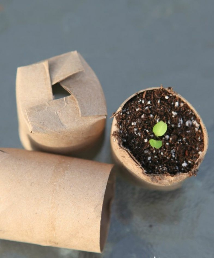 macetas DIY pequeñas hechas de rollos de papel higiénico, ideas de manualidades con tubos de carton