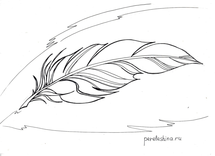 dibujo original de tatuaje con pluma con significado, esbozo de grande pluma en negro, tatuajes en el brazo originales