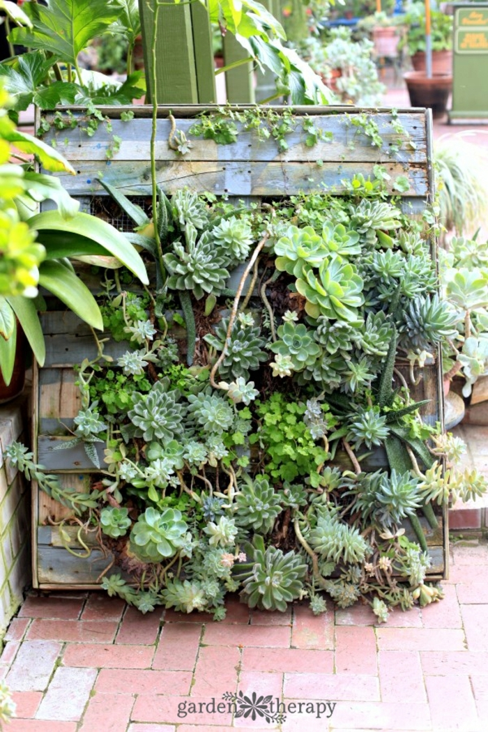 ideas sobre jardineras con palets hechas a mano, palet con efecto desgastado con plantas suculentas dentro