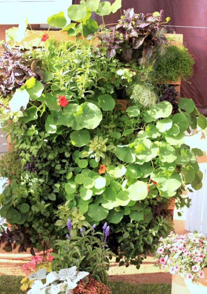 jardineras de madera con muchas plantas verdes DIY, ideas para decorar el jardín con materiales reciclados