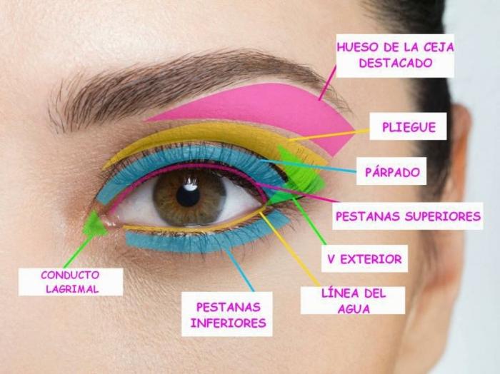 consejos útiles sobre como maquillarse los ojos, partes del ojo para maquillarse de una manera precisa y moderna