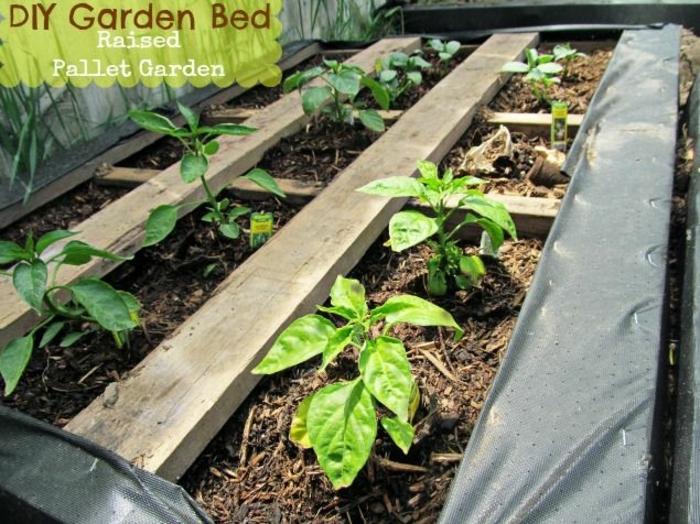 lecho de plantas verdes hecho con palets, bonitas ideas de decoración de jardines y patios, como hacer maceteros de madera paso a paso