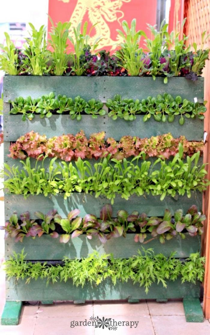 preciosa jardinera de palets DIY pintada en verde con diferentes tipos de plantas verdes, jardinera madera paso a paso