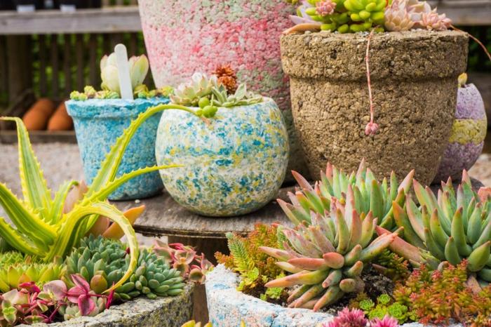 preciosas macetas de diseño original, propuesta colorida para un jardín pequeño, cómo decorar un jardín pequeño con cactus