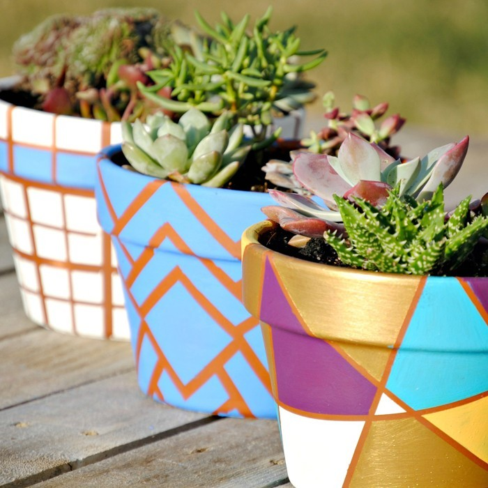 ideas sobre cómo decorar un jardín pequeño con macetas en colores, ideas con cactus