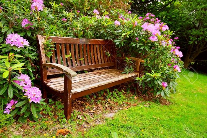 preciosas ideas para jardines pequeños, banco de madera y arbustos con flores, ideas de decoración jardín pequeño