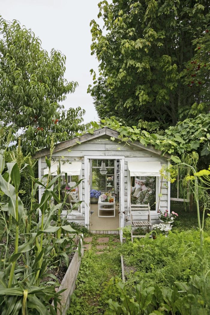 ideas para jardines pequeños decorados con encanto, pequeña casa, jardín con cultivo