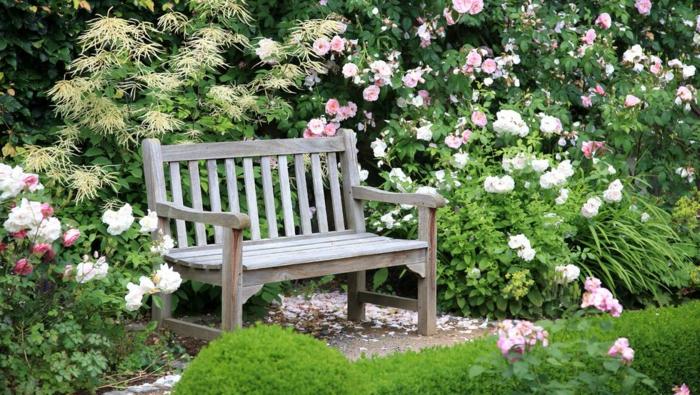 preciosas ideas para jardines pequeños, banco pequeño de madera y rosales de diferente color