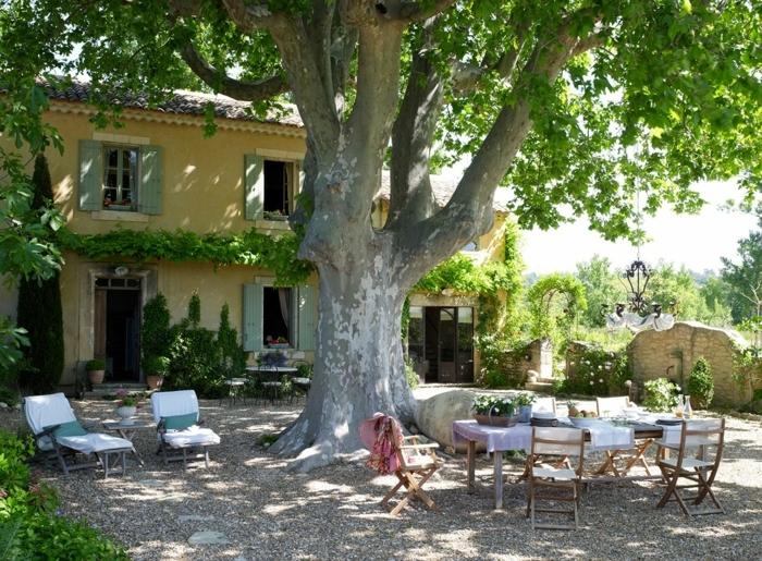 jardines rústicos, árbol de muchas décadas en el medio del jardín, mesa y sillas de madera
