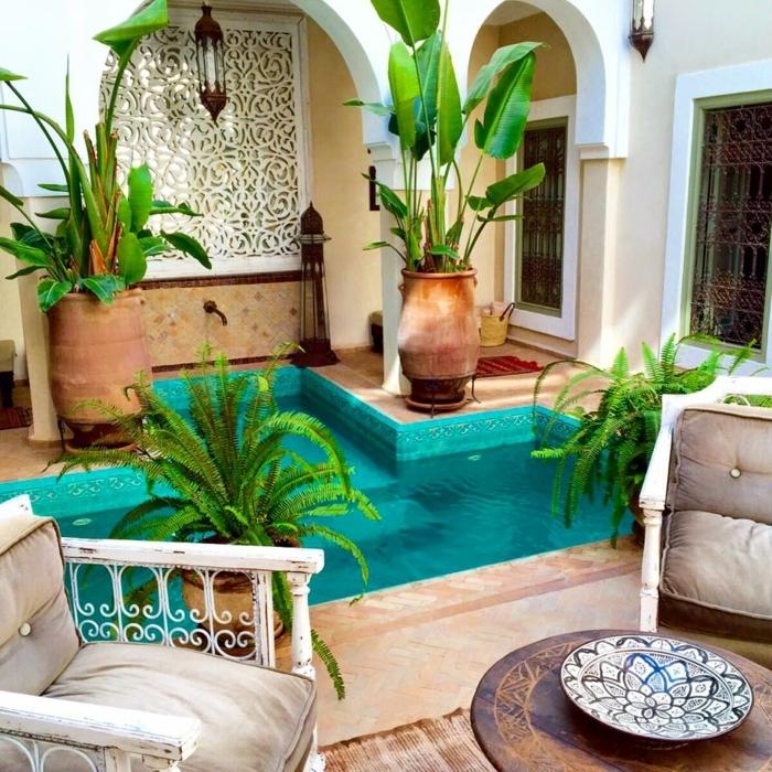 decoracion de jardines rústicos, jardín exótico con plantas en macetas grandes de hojas grandes y sillas de madera