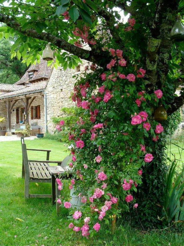 decoración de encanto con rosales, ideas y consejos sobre cómo organizar un jardín pequeño